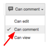 "2. Choose ""Can Comment"""