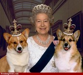 Queen of Elizabeth