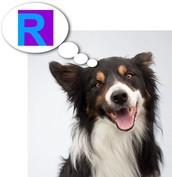What is Rewordify?