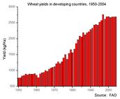 Wheat Yield of Productivity