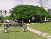 Alele Museum, Library and Archives
