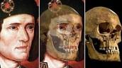 Bones & Skeleton Reconstruction