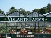 100% Local and Organic