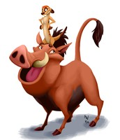 Timon and Pumba!