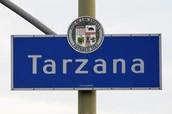 About Tarzana