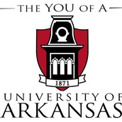 #1 University Of Arkansas