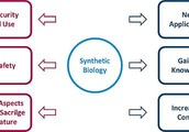 Ethical Issues With Synthetic Biology