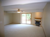 Large lower-level living area