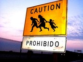 United State's Executive Amnesty Decision