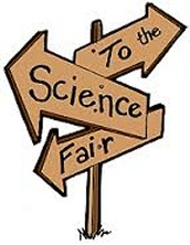 3. District Science Fair Results