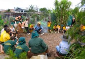 Permaculture - A nutritious Theory