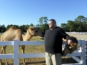 My love for Camels