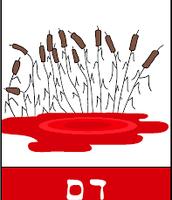 מכה ראשונה- דם