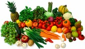 How to Keep Your Circulatory System Healthy