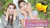 GOLD FISH challenge with Cassie!