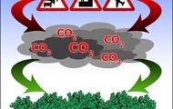 Carbon Dixide