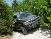 Jungle Tour On A Hummer