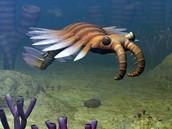 Ocean Life Began