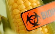 Risks Human Health