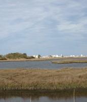 Fen-wick Island , Delaware.