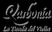 QARBONIA - THE VIOLIN SHOP