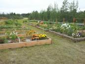 Garden Space Available