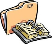 Observation of an IEP Meeting