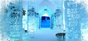 History of The Ice Palace