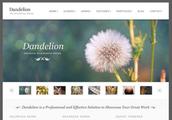 Una Pagina Web Corporativa, es más que una página web, es una solución empresarial