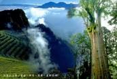 Mount Ali Taiwan