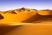Sahara Desert guide for Aliens
