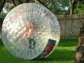 The hamster ball