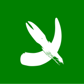 The early rebellion flag