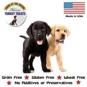 Healthy Dog Treat