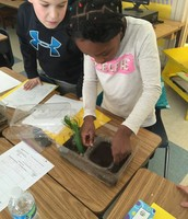 Hands-on Learning in 4th Grade Science Classes
