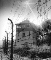 Electric wire fences that will keep Jews from escaping the labor camp.