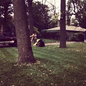 Raking, Gutters, and Mowing