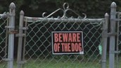 There was a beware of dog sign clearly visible.