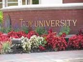 Troy Information