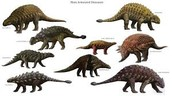 240-210 Triassic Period