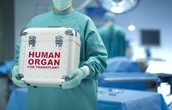 An organ donor can save 8 lives.