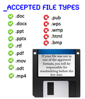 Accepted File Types