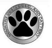 Hire Dog Grooming Service and Give Your Dog a Luxurious Life