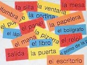 Spanish 1 - Traditional and Block Classes
