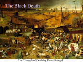 Why should we study The Black Plague in history class?