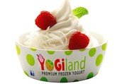 We are Self-Service Premium Frozen Yogurt shop bringing Healthy, Energizing and Natural Frozen Yogurt to your neighborhood with different flavors and numerous toppings to top it. Stop by TODAY