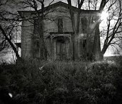 The Abandoned Children's Home