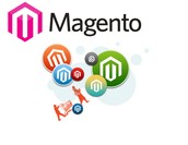 Shape your E-commerce Business with Magento Developers