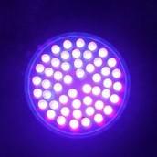 Description of Ultraviolet Light