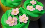 yummy fun summer cup cakes!
